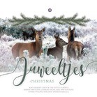 Juweeltjes Christmas